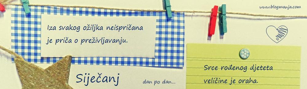 Blog Manja